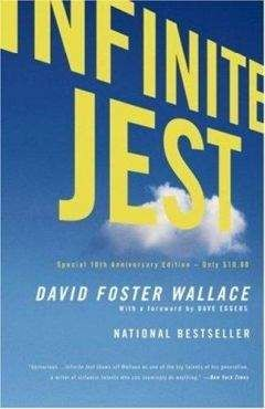 David Wallace - Infinite jest