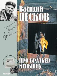 Василий Песков - Полное собрание сочинений. Том 19. Про братьев меньших