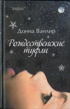 Донна Ванлир - Рождественские туфли