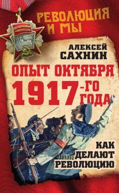 Алексей Сахнин - Опыт Октября 1917 года. Как делают революцию