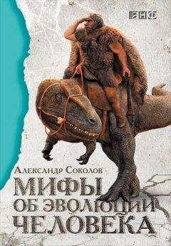 Александр Соколов - Мифы обэволюции человека