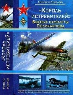 Михаил Маслов - «Король истребителей» Боевые самолеты Поликарпова