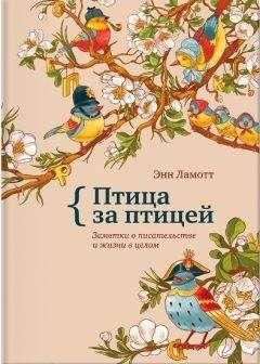 Энн Ламотт - Птица за птицей. Заметки о писательстве и жизни в целом