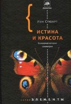 Иэн Стюарт - Истина и красота. Всемирная история симметрии.