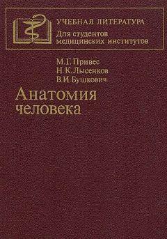 Михаил Привес - Анатомия человека [9-изд]