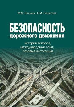 Михаил Блинкин - Безопасность дорожного движения. История вопроса, международный опыт, базовые институции