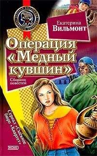 Екатерина Вильмонт - Дурацкая история