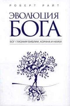 Роберт Райт - Эволюция бога: Бог глазами Библии, Корана и науки